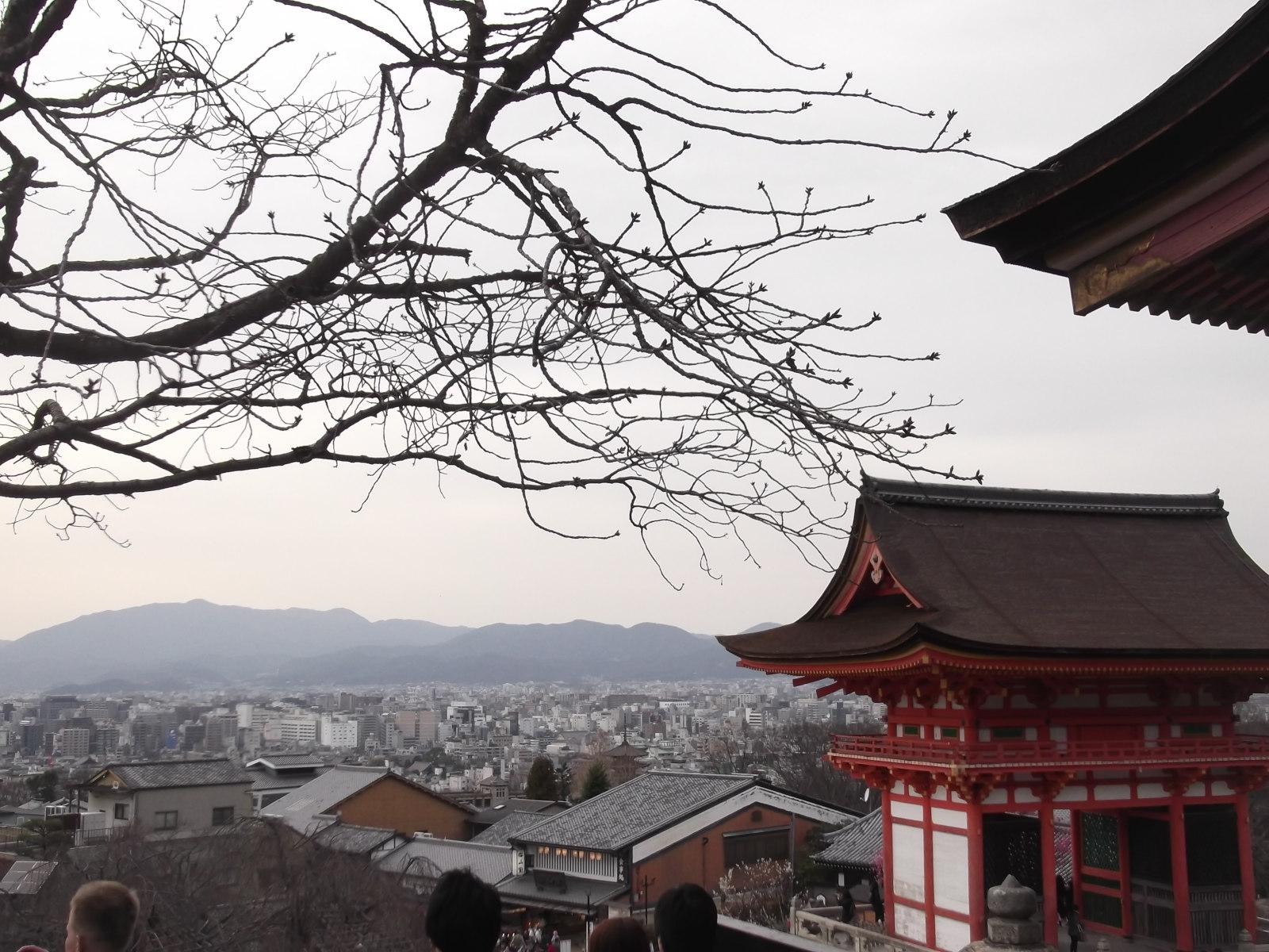 Wyprawa do Japonii na 5S Summit